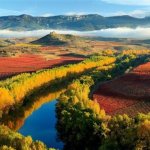 tour de la rioja vino y cultura