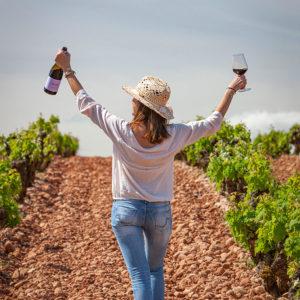visit la rioja zinio winery