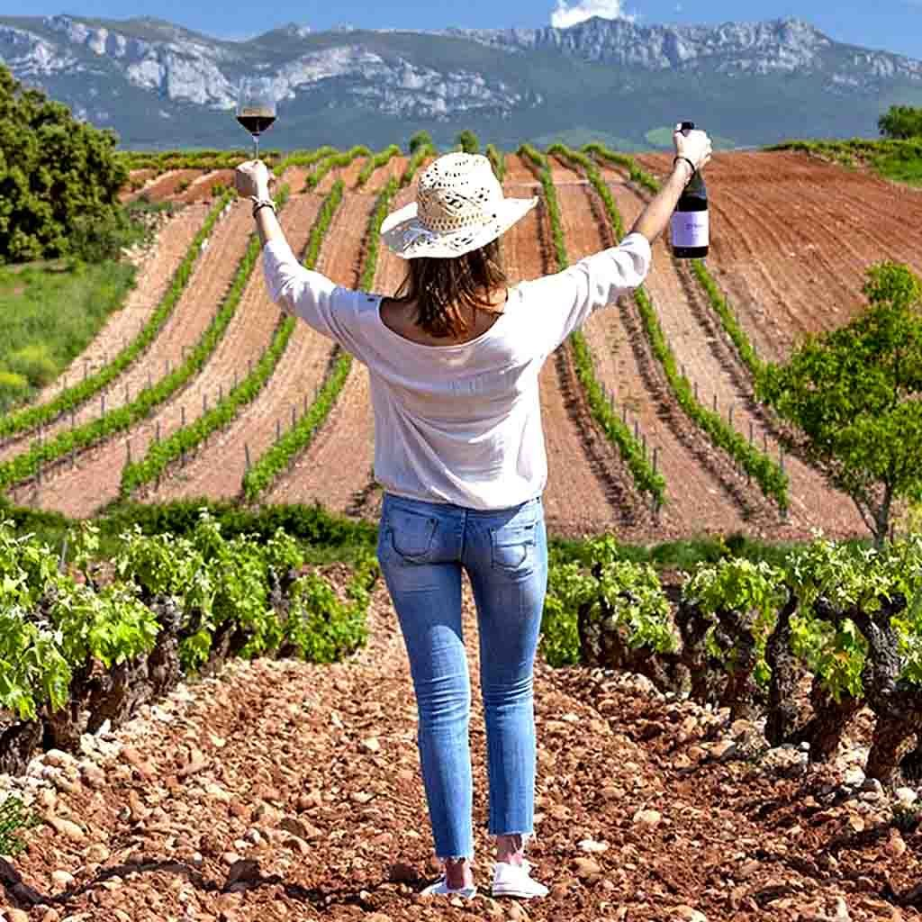 wine tours and visits header