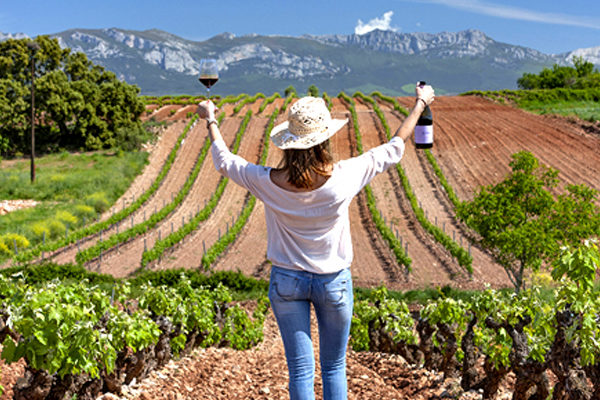wine tours and winery visits header